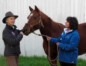 Cynthia teaching a bitless riding clinic.