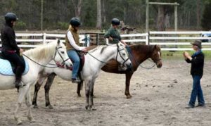 Bitless bridles are becoming more accepted at lessons and clinics.