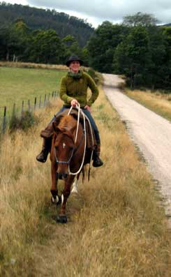 Are you covered for insurance if you ride without a bridle or helmet?