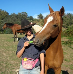 Teaching your horse to accept the worming tube is easy with positive reinforcement (clicker training) and regular practice.