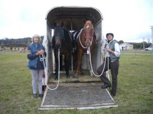 If you have a friend around, you can be even more creative when you play with your horses.