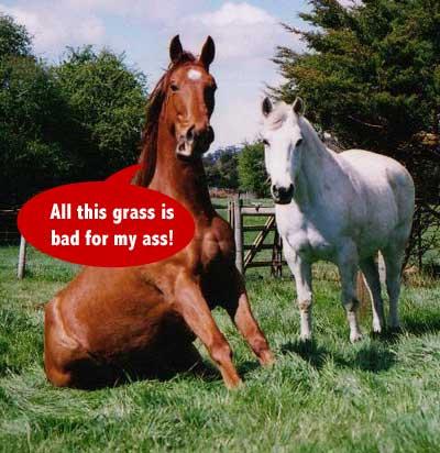 GrassAss