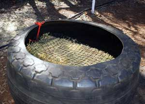 Net-tied-into-tyre