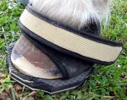 SandalPadon