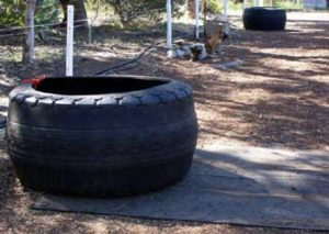 Tyre-on-rubber-mat