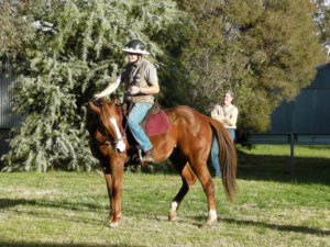 Teaching a good hindquarter yield (disengagement) is essential for any type of riding if you want to control your horse's movement.