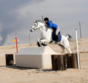 Helen and Oscar in Saudi Arabia compete in Cross country safely wearing a bitless bridle.