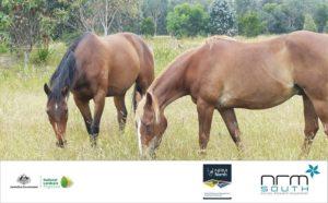 NRM Healthy Horses Land Expo
