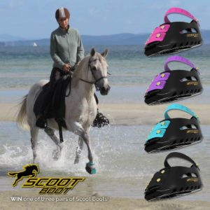 Vanessa and Echo make beautiful models for the Scoot Boot and the LightRider Stockhorse Bridle.