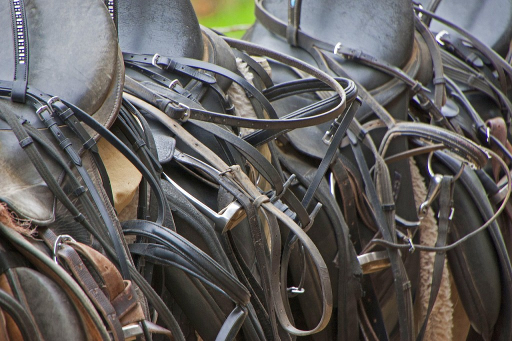 Care for your leather tack and it will last for many years, and stay safe.
