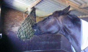 High Hanging Hay Net