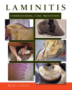 Laminitis, Understanding, Prevention and Cure by Remko Sikkel is highly recommended.